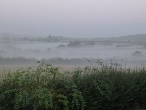 Mist over fields